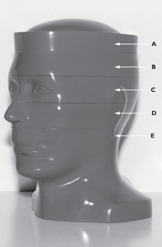 computed-tomography-head-phantoms-big
